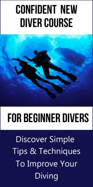 Confident New Diver